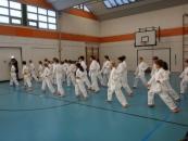 lehrgang_karate_1