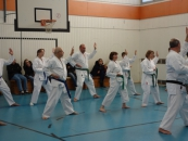 lehrgang_karate_2