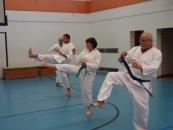 lehrgang_karate_4