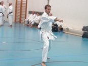 lehrgang_karate_7