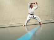 karate_005