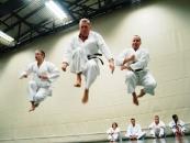 karate_013