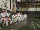 training-1_klein
